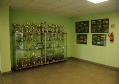 Zdjęcie przedstawia witryny z medalami i pucharami.